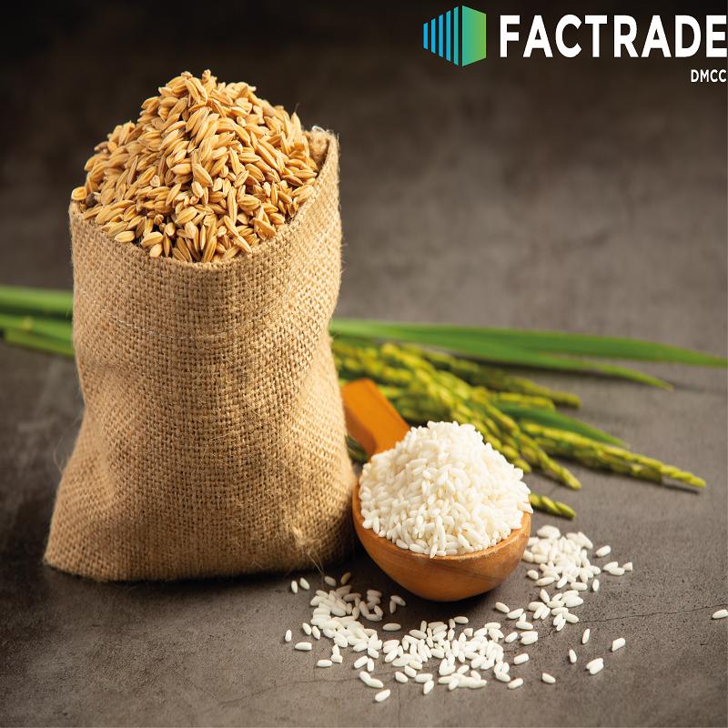 Guinea rice market report
